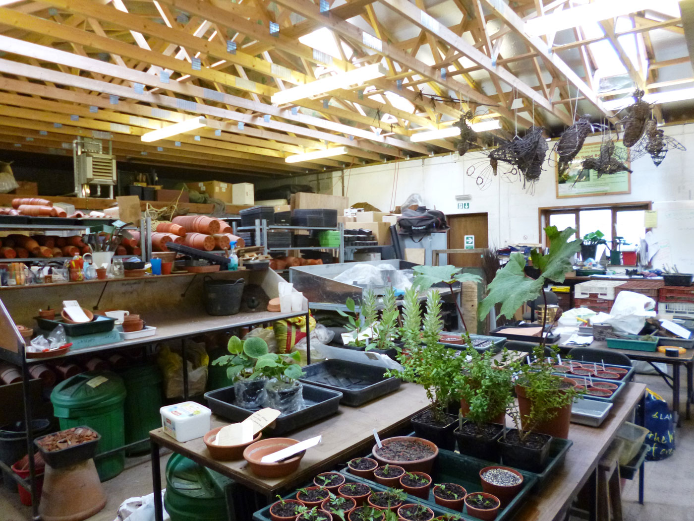 The potting shed at the University of Bristol Botanic Gardens