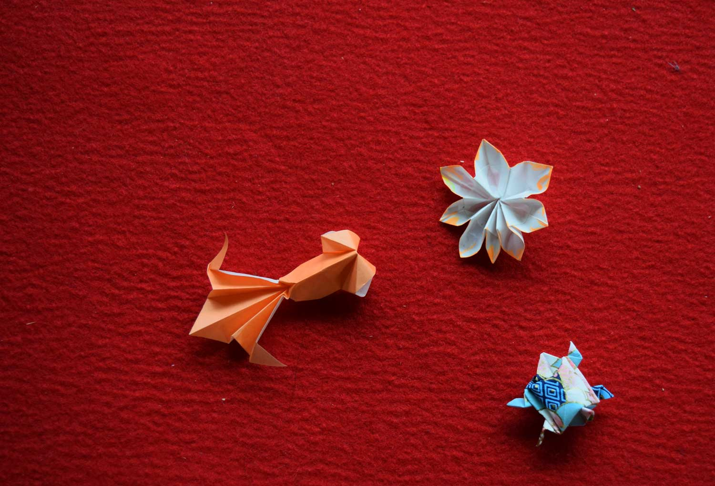 Un pesce rosso, una tartaruga e un non meglio identificato fiore a otto petali si scambiano i convenevoli.