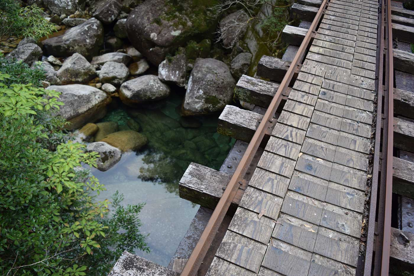 An Indiana Jones worth bridge on the trail to the <i>Yakusugi</i> forest.