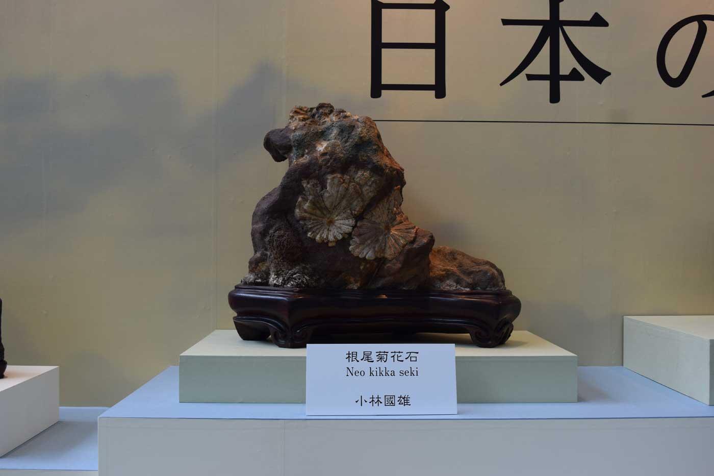 "Suiseki ""Neo kikka seki"", con incastonato un pattern associabile al crisantemo imperiale giapponese."