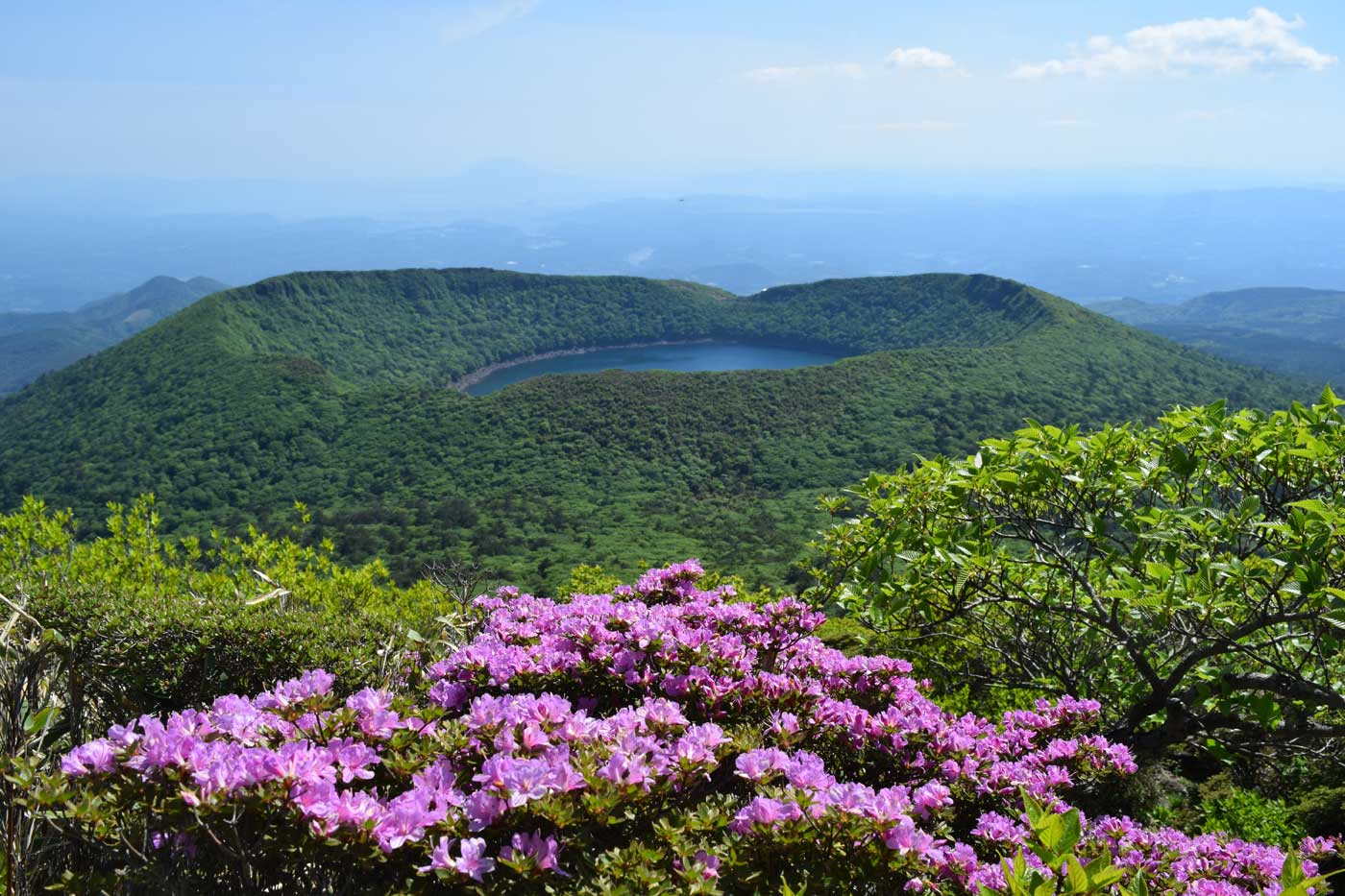<i>Rhododendron kiusianum</i> at the summit of Karakuni-dake. In the distance, lake Ōnami.