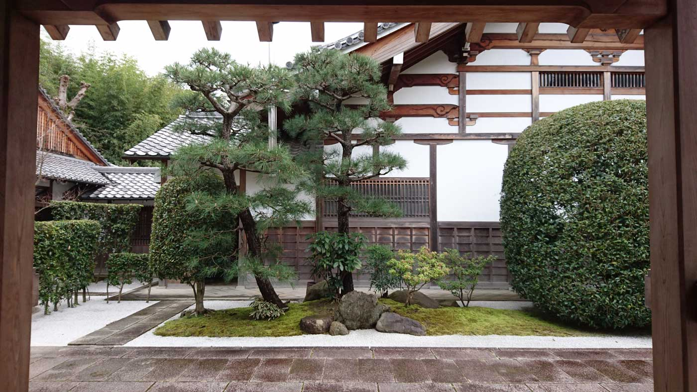 A marriage of <i>Pinus densiflora</i> in a private garden in Kyoto.