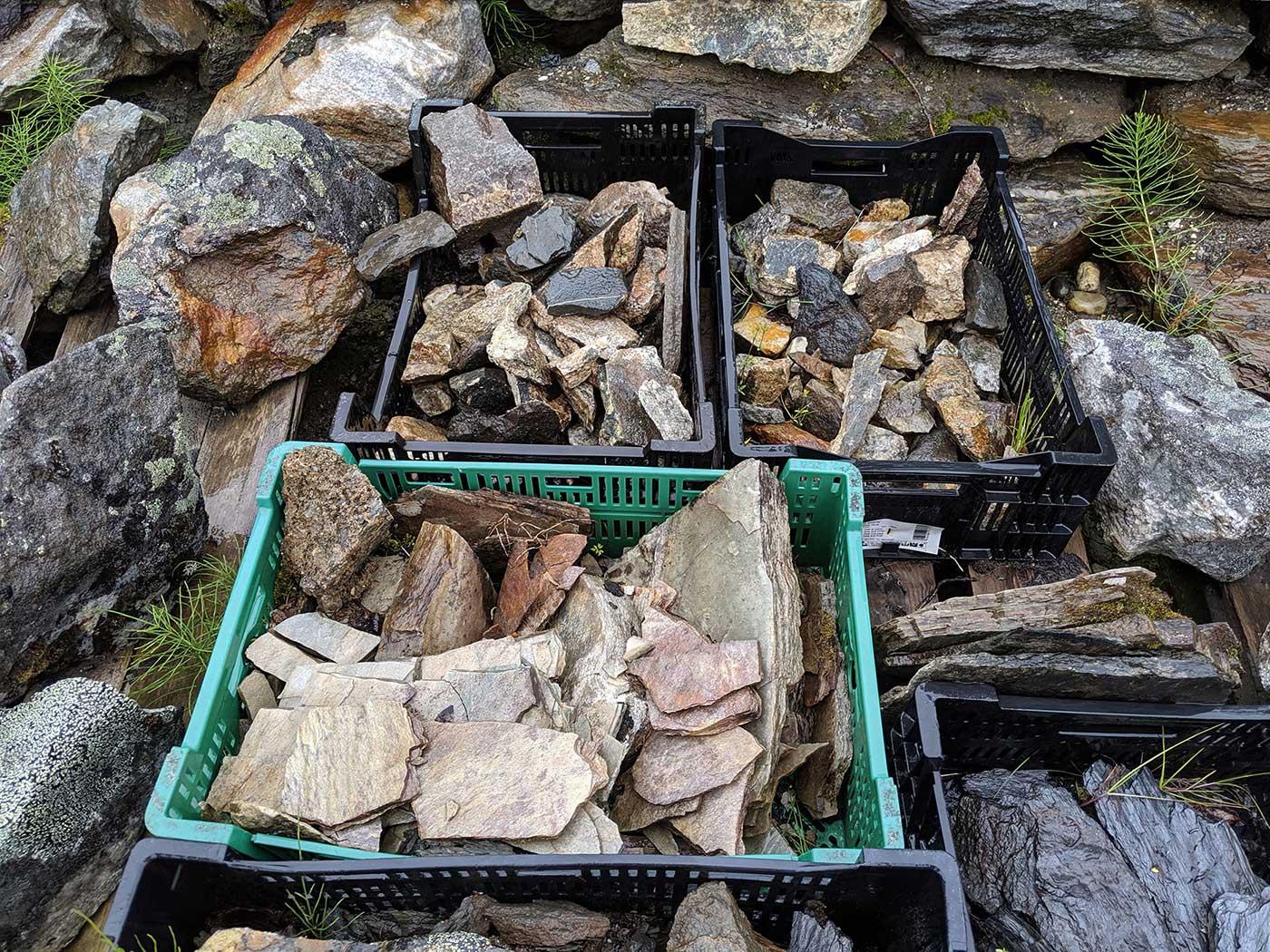 Rock samples are kept like plants in the nursery area