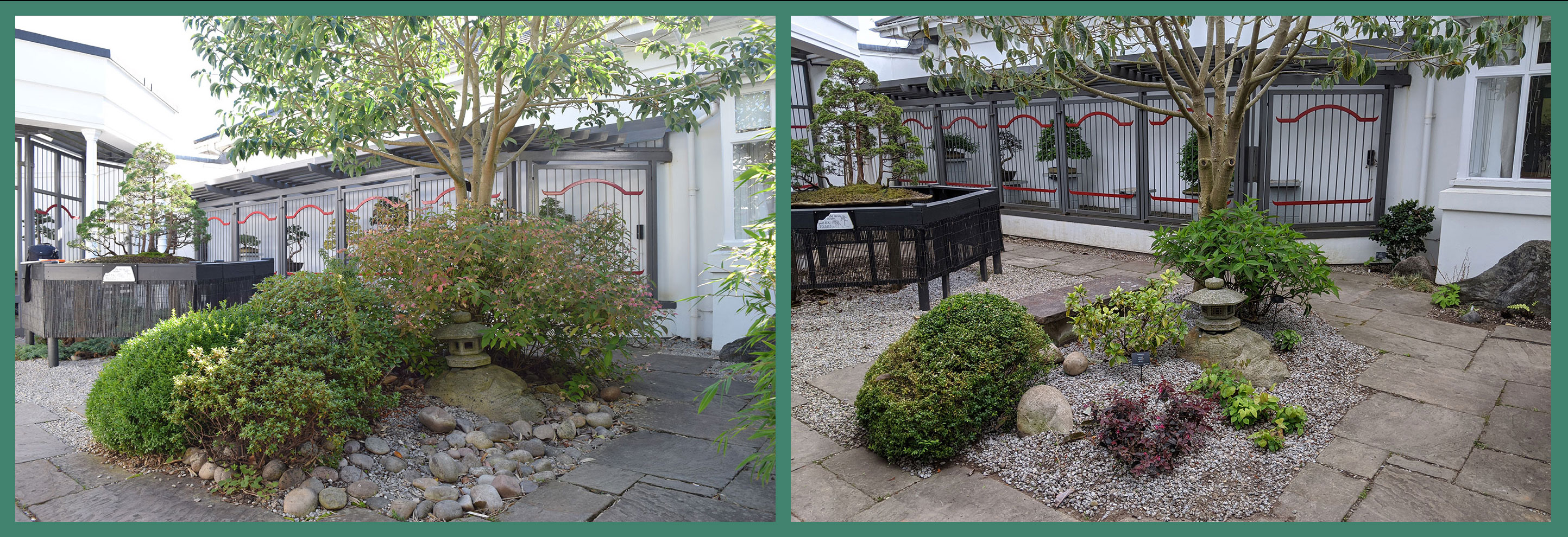 Front gravel bed of the Bonsai Court. The bed was extensively worked: soil improved, aggregates and planting changed.