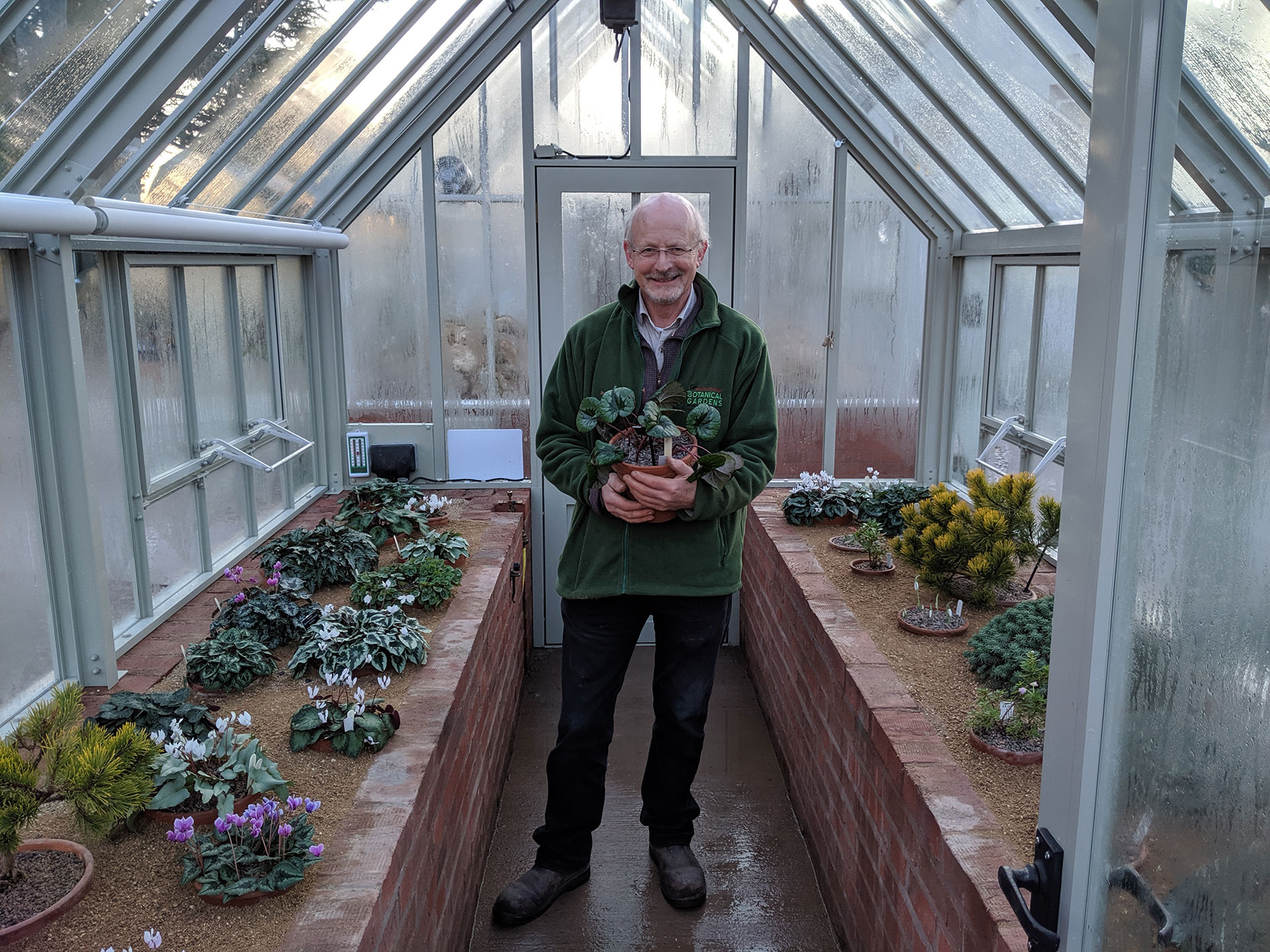 Roy proudly showing a display of <i>Cyclamen</i> spp.and alpines.