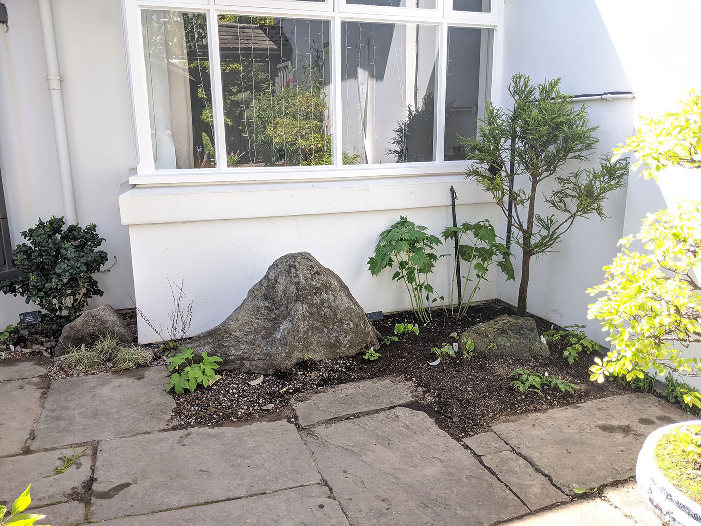 The woodlanders are planted and an extra rock is strategically placed