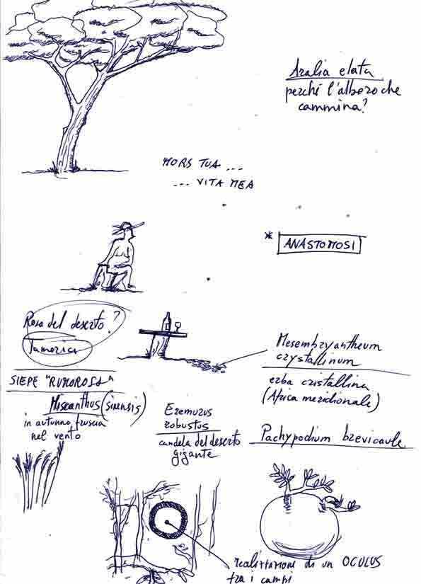 Sketch (11)
