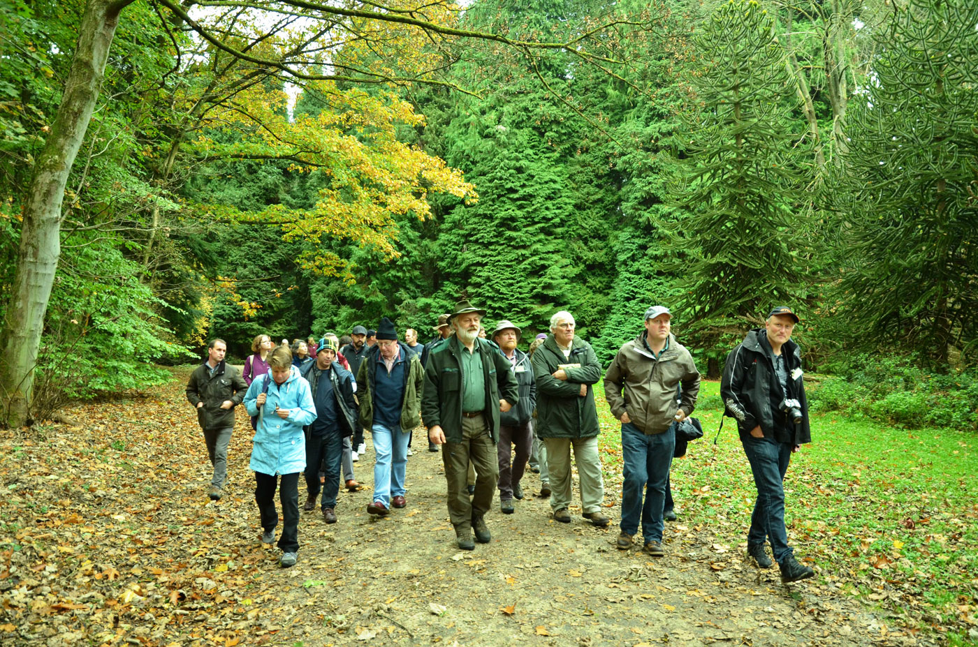 Wilfried Emmerechts guiding the PGG members at Tervuren Arboretum