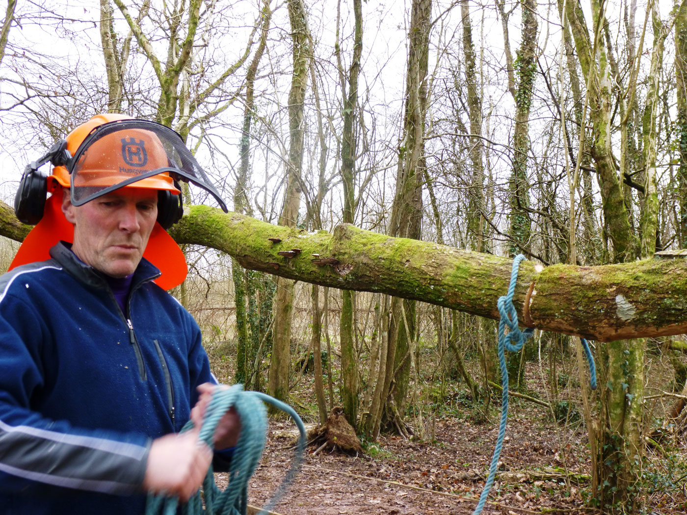 William Tudor Davis, arboriculturalist at the National Botanic Gardens of Wales