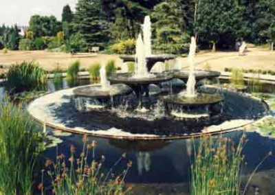 One year at the Cambrige University Botanic Garden